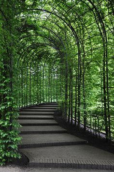 Passage in the garden at Alnwick Castle, Northumberland, England.