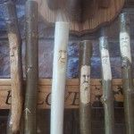 Close-up of group of 6 Walking Sticks from Ozarkwalkingsticks - www.ozarkwalkingsticks.com #carving #walking stick
