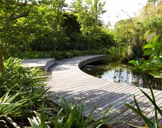 I would love a ornamental lake and boardwalk pool water features Backyard Water Feature, Ponds Backyard, Pergola Garden, Garden Landscaping, Landscape Architecture, Landscape Design, Natural Pond, Natural Swimming Pools, Pond Design