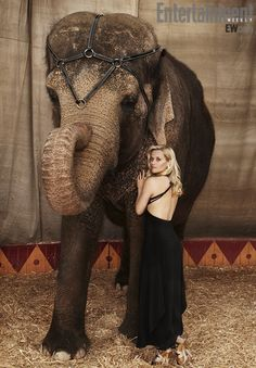 Circus horses water for elephants - photo#15