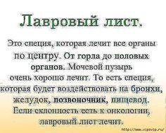 5745884_lavrovii_list_ (515x411, 174Kb)