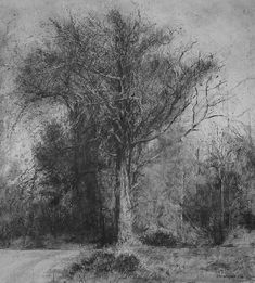michael wann || Artist  Old Friend Lissadell 1, charcoal and wash on canvas, 112x122cm