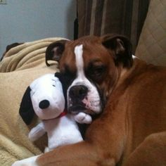 Jeter needs a snoopy friend too!!!