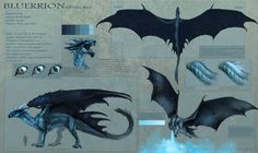 Bluerrion- new reference sheet by Allagar dragon chart | Create your own roleplaying game material w/ RPG Bard: www.rpgbard.com | Writing inspiration for Dungeons and Dragons DND D&D Pathfinder PFRPG Warhammer 40k Star Wars Shadowrun Call of Cthulhu Lord of the Rings LoTR + d20 fantasy science fiction scifi horror design | Not Trusty Sword art: click artwork for source