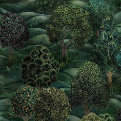 Purchase Cole & Son Wallpaper SKU# Collection Botanical Botanica pattern name Forest color name Forest Greens. Theme Print enjoy this impressive wallpaper. Cole And Son Wallpaper, Green Wallpaper, Folklore, Cole Son, Forest Room, Rolling Meadows, Feature Wall Bedroom, Dappled Light, Forest Design