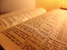 Man does not live on bread alone but on every word that comes from the mouth of the LORD. (Deut 8: 3)