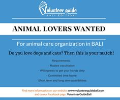 Looking to Volunteer at an animal organisation? Have a look at our website to find out which organisation is now hiring and which ones we recommend!