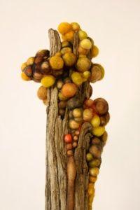 Jodi Colella, marrow, felted wool, found driftwood