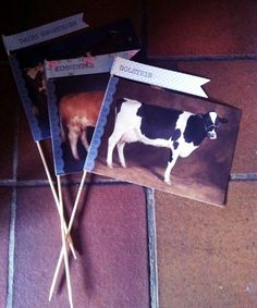 Vintage cow postcard table names for a farm wedding