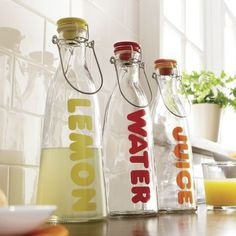 Glass Beverage Bottle from Home at Five®
