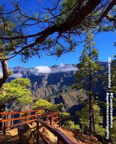 """"""" Buenos días desde la Isla Bonita  -   momentos Caldera de Taburiente, La Palma -"""
