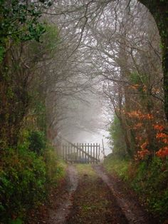 Road to the unknown, Lower Normandy, France | Flickr - Photo Sharing!