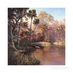 Myakka Sunset Posters by Art Fronckowiak at AllPosters.com
