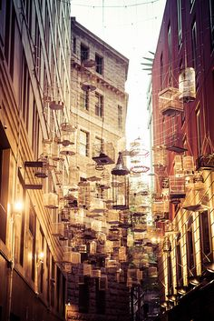 Angel Place Birdcages, Sydney, Australia.