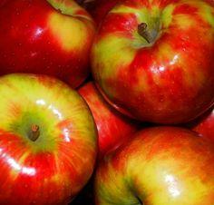 Honeycrisp Apples My favorite the best! Apple Recipes, Fall Recipes, Banana Granola, Apple Varieties, Honeycrisp Apples, Apple My, Candy Cakes, Granny Smith, Fruit Garden