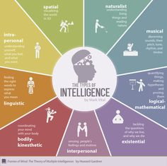 Descartemos la existencia de que la inteligencia se basa en buenas calificaciones, todos poseemos desarrolladas diferentes tipos de inteligencias que nos permiten destacarnos ;)