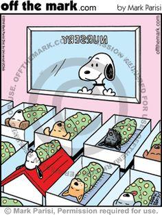 snoopy, baby, nursery, hospital, birth, dog house, top, sleep, dog,