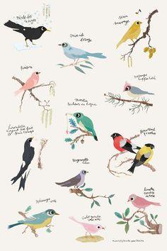 Op deze prachtige poster zijn verschillende vogels afgebeeld.   Een kleurrijke poster met liefde voor de natuur.