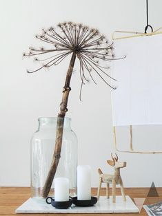 Beautiful, such a bear claw in a large vase on the table - Lisanne van de Klift - Интерьерные вещи - Beautiful, such a hogweed in a large vase on the table – Lisanne van de Klift - Scapa Home, Vibeke Design, Happy New Home, Room Lamp, Inspired Homes, Home Decor Inspiration, Dried Flowers, Interior Styling, Boho Decor