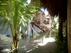 Relax in our tropical garden