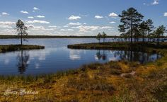 South Ostrobothnia province of Western Finland. - Kauhaneva-Pohjankangas kansallispuisto, Kauhajoki, Etelä-Pohjanmaa.