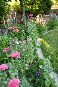 Cottage garden border with concrete mowing strip