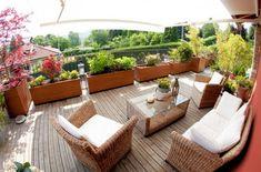 windschutz für den balkon ideen pflanzen hecken holz pflanzkuebel