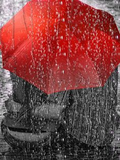 Rain Rain Here to stay, for today. WFH. Love Greeting Card Photograph. A fine art print.