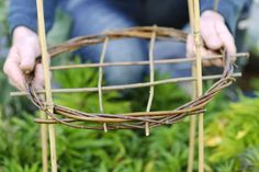 Discover the different ways to use canes, garden twine and other plant supports, in our practical guide, with advice from BBC Gardeners' World Magazine.