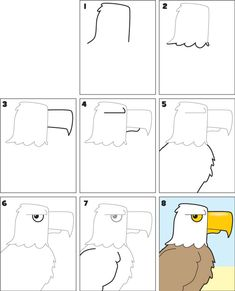 How-To Draw an Eagle