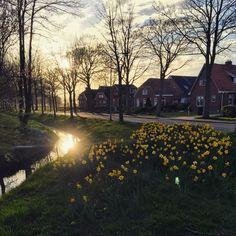 Adorp, Groningen, the Netherlands