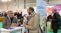 Stand CODERS 13