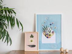DIY – Pressed flowers in frame