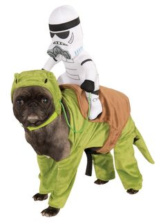 Dewback Pet Rider Costume * Check out the image by visiting the link. (This is an affiliate link and I receive a commission for the sales)