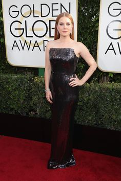Amy Adams in Tom Ford at 2017 Golden Globes