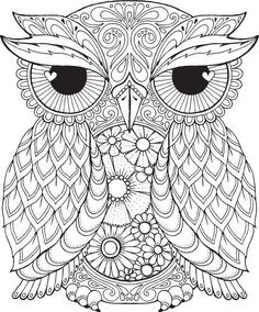 Check out this cute little owl! You can really pull off some intricate coloring with this one!Also keep an eye out for our upcoming owls adult coloring book! It will be free rightHERE on our author pagewhen its released. Follow our author page so you don't miss any great free books!