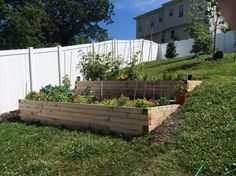 Good Free Raised Garden Beds on a hill Strategies Sure, that is certainly a bizarre headline. But yes, if Initially when i first built my own raised garden beds. Garden Yard Ideas, Garden Boxes, Lawn And Garden, Garden Projects, Garden On A Hill, Hillside Garden, Herb Garden, Sloped Backyard Landscaping, Sloped Garden