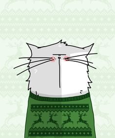 le chat en pull