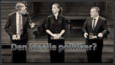 Den ideelle politiker