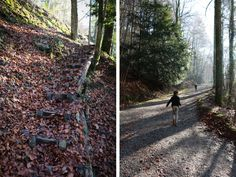 """The Sihlwald """"Walderlebnispfad"""" is an fun loop trail through the forest with 12 interactive stations, including a wood log xylophone, a barefoot path, an animal long jump, and raised path through Wood Logs, Forest Theme, Paths, Trail, Hiking, Fun, Animals, Woodland Forest, Walks"""