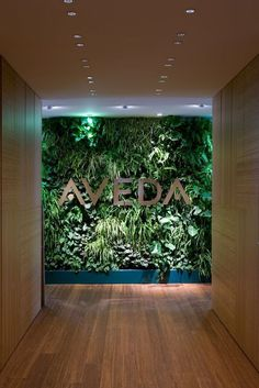the green wall; less busy. In front of which we take photos with our clients :D . the green wall; Spa Design, Cafe Design, Design Ideas, Green Interior Design, Salon Interior Design, Deco Restaurant, Restaurant Design, Deco Spa, Green Office