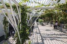 Galeria de Pérgolas Vegetalizadas / Cong Sinh Architects - 3