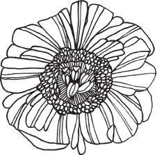 Lg Blossom Flower (1367j) Rubber Stamp Impress