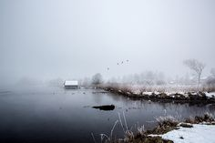 One January morning in at the lake Kochel in Bavaria, Germany.