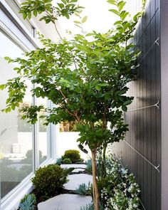 Find out 15 stunning and chic side yard garden design ideas to make your house more alive. Home Garden Design, Diy Garden, Garden Paths, Dream Garden, Home And Garden, Rocks Garden, Small House Garden, Garden Modern, Garden Deco