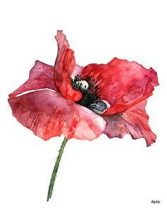 """Rosso papavero pittura - stampa dal mio dipinto acquerello originale, """"Dressed in Red"""", fiore rosso, papavero pittura, acquerello fiore, papaveri"""