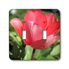 Red Tulip Macro Easter Flower Photography - Light Switch Covers - double toggle switch