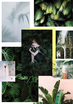 UJB-Going Green Trend- a newsletter for Eclectic Trends