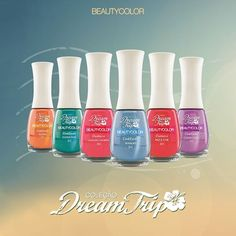 Dream Trip BEAUTY COLOR