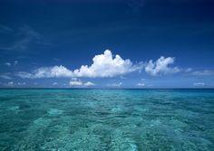 beautiful+beaches+in+florida | florida beach wallpaper wallpaper | Beachwallpapers.in
